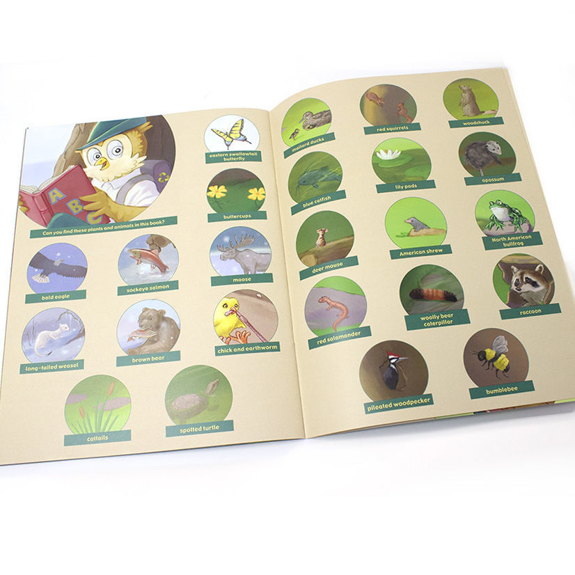 Woodsy Owl's ABC's Book peek inside - English