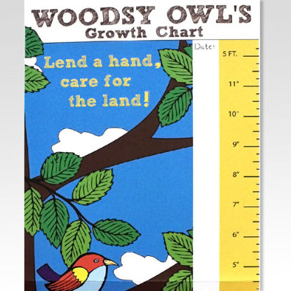 Woody Owl Growth Charts