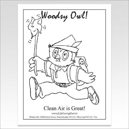 "Picture of Woodsy Owl ""Clean Air is Great"" Coloring Sheet"
