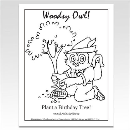 "Picture of Woodsy Owl ""Plant a Tree"" Coloring Sheet"