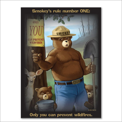 Picture of Smokey's Rule Number ONE Poster  - English
