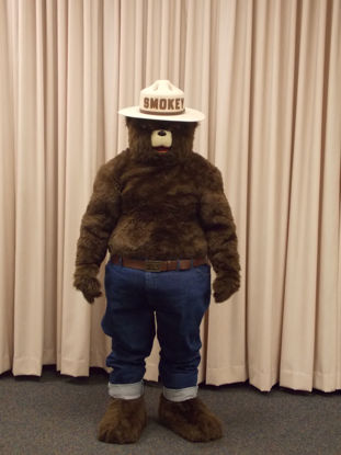 Picture of Smokey Bear Costume