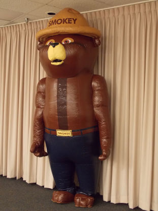 Picture of Smokey Bear Walkaround