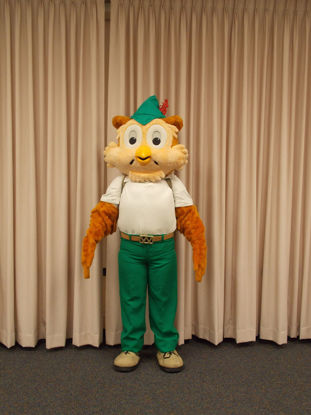 Picture of Woodsy Owl Costume