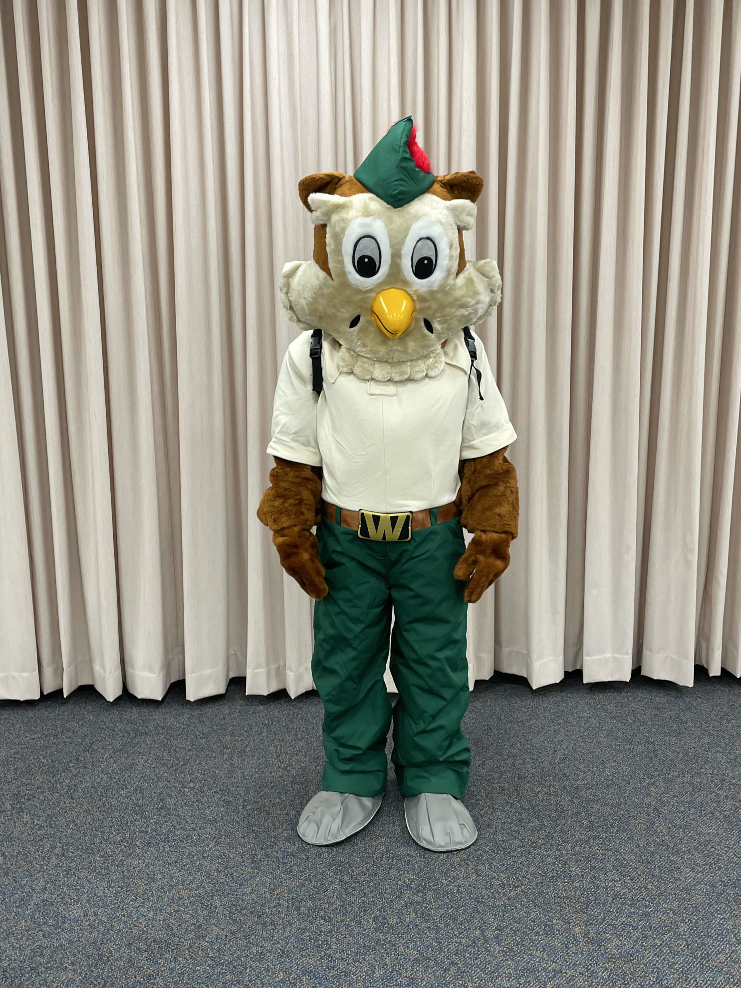 Picture of Woodsy Owl Costume (new version)